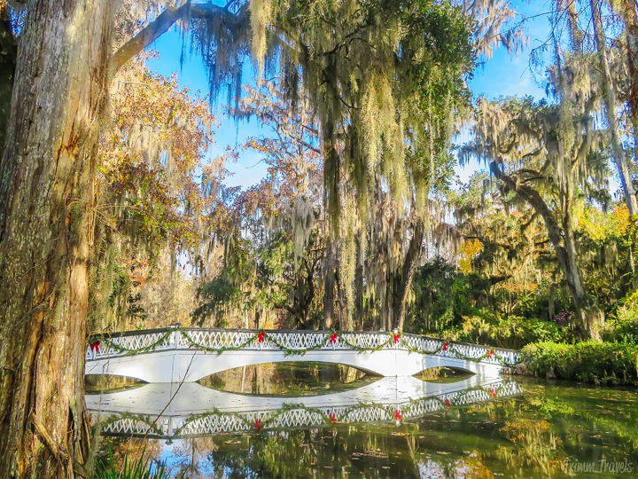 white iconic bridge with Christmas decorations at Magnolia Plantation Charleston South Carolina