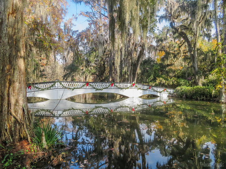 sideview of iconic white footbridge decorated for Christmas in Magnolia Gardens Charleston