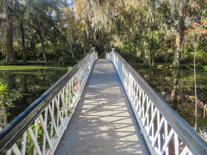 looking back over iconic white footbridge in Magnolia Gardens Charleston
