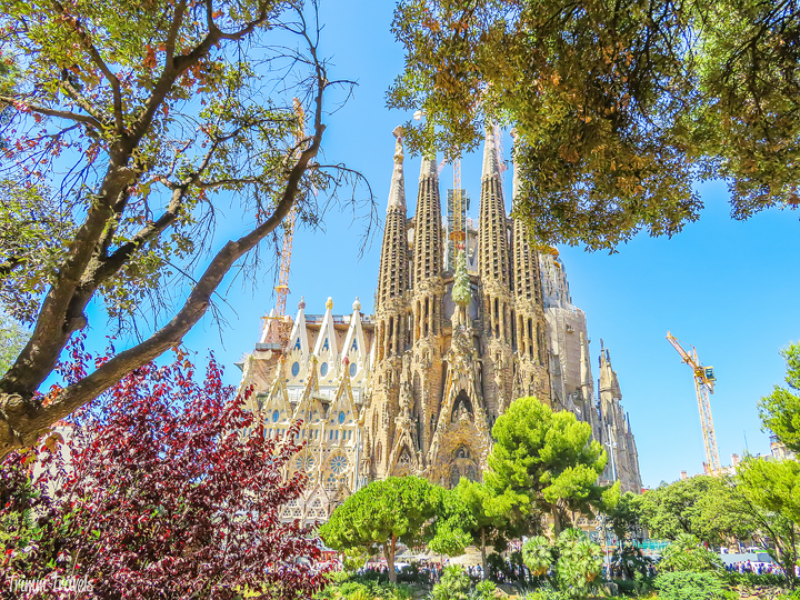 looking at La Sagrada Familia through trees A Gaudi Barcelona Tour