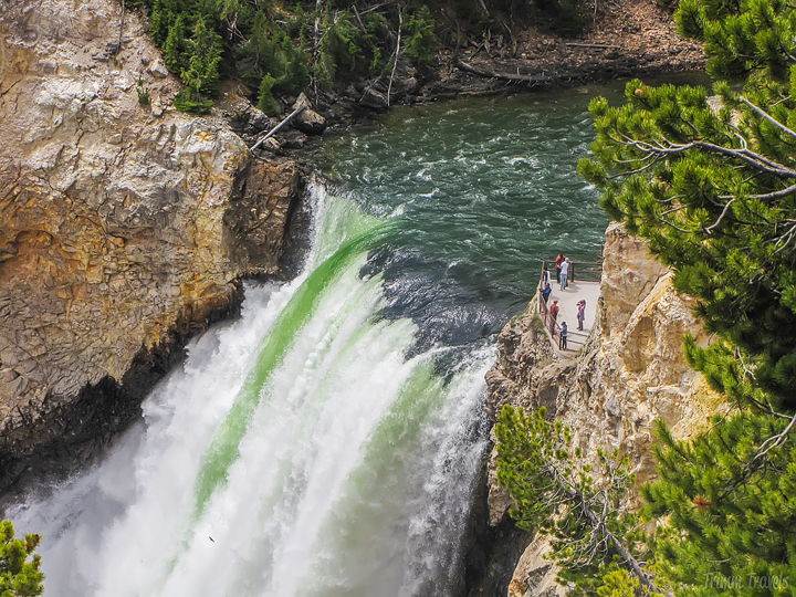 closeup of lower falls in yellowstone