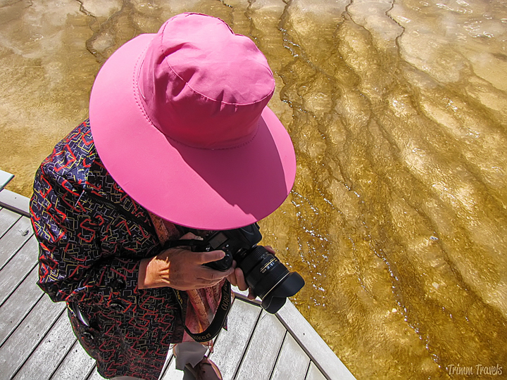 lady in pink hat checking the pictures she took of me in yellowstone