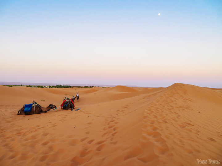 Is a night in the Sahara on your bucket list? Looking for a luxurious glamping experience? Check out Top Desert-the best Morocco Luxury Desert Camp! #saharadesert #sahara #glamping #desert #desertcamp #luxury #luxurytravel #topdesert #morocco #africa #travel #adventure