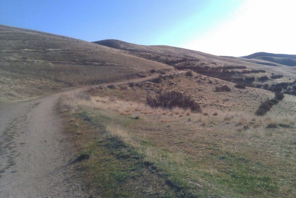 Boise Foothills and other stuff (1/6)