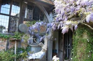 garden05