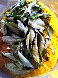 Homemade Curry (Trinidad)
