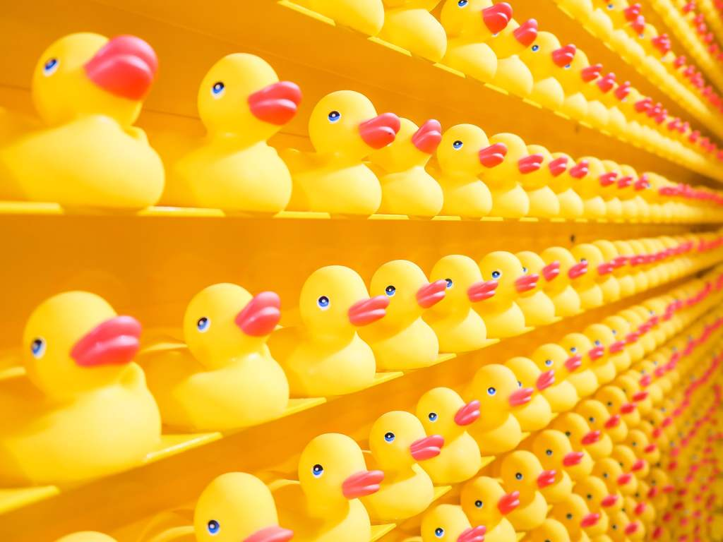 Rubber Duckies on a shelf