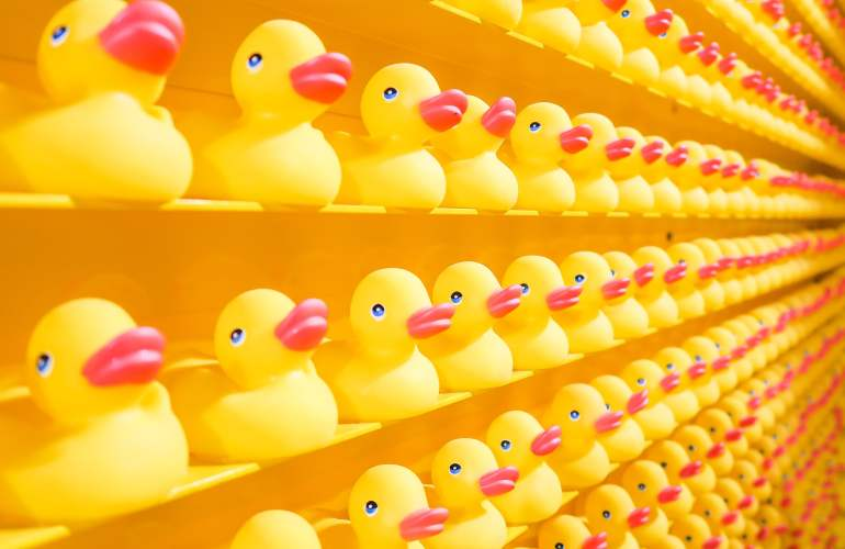 Rubber Duckies on a shelf