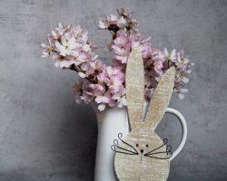 hare-4093851_1920