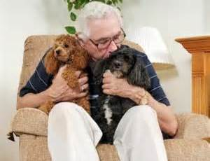 elderly and pets