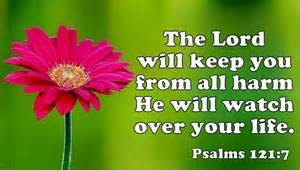 Transitional Friday: Psalms 121:7-8--The Lord Will Protect Us