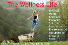 The WellnessLife