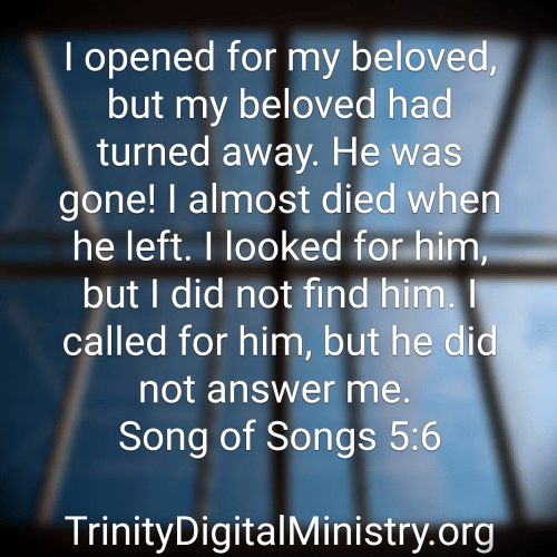 Song of Songs 5_6 image