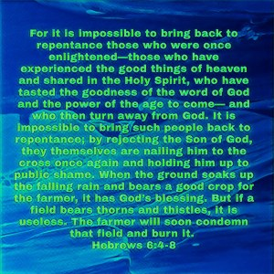 Hebrews 6:4-8 imag