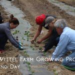 Planting Day at Wittel Farm
