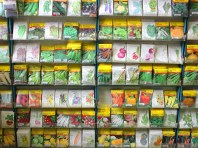 A great selection of organic, open pollinated, hybrid seeds