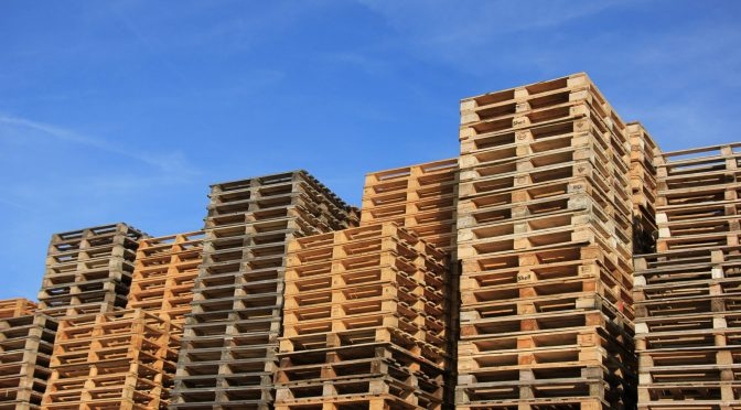 Pallets:  The Unsung Hero of Shipping