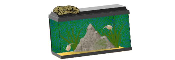 Triops Aquarium Pflegen