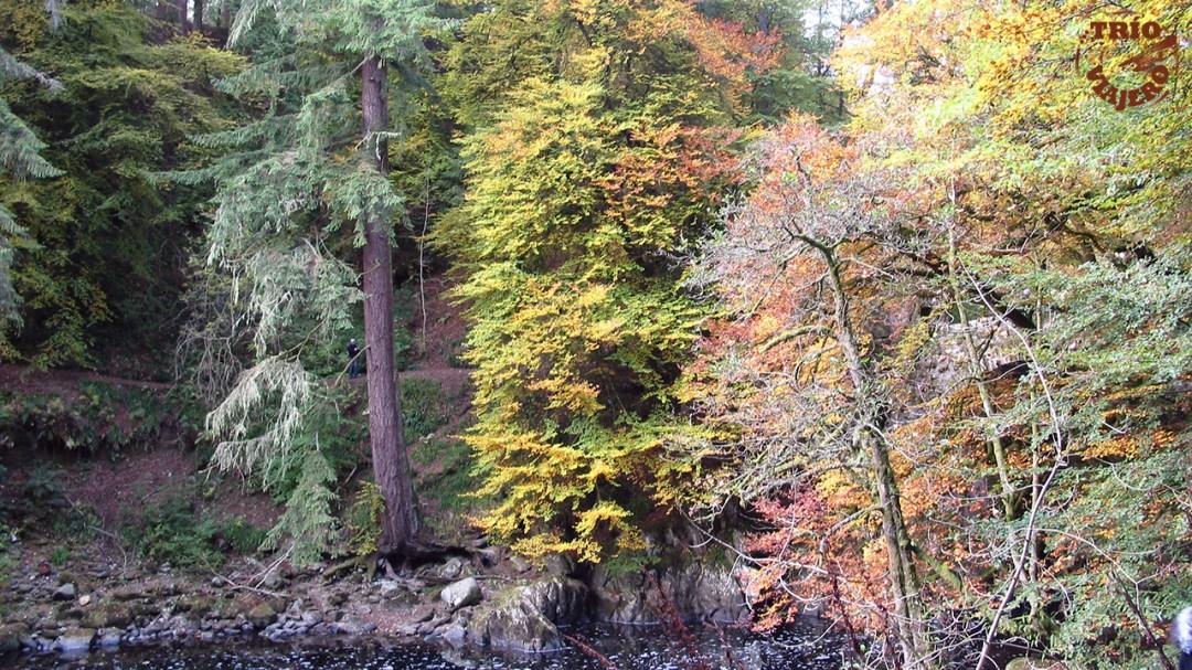 The Hermitage (Escocia - Reino Unido - Europa) ⋆ Trio Viajero