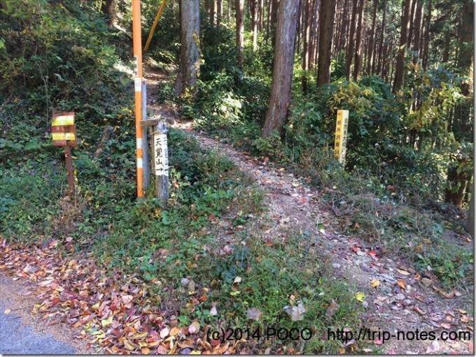 天覚山への道