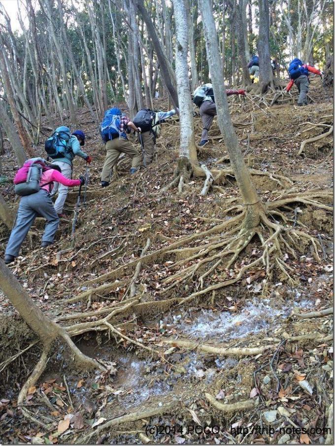 伊豆ケ岳への急坂