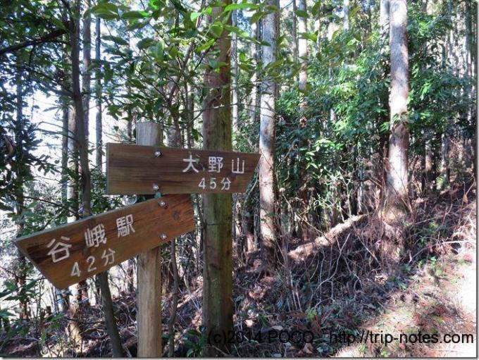 大野山標識