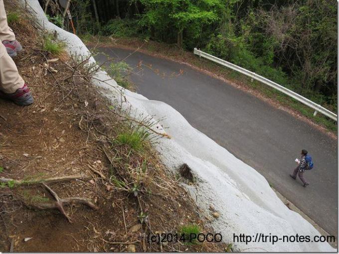 車道と山道