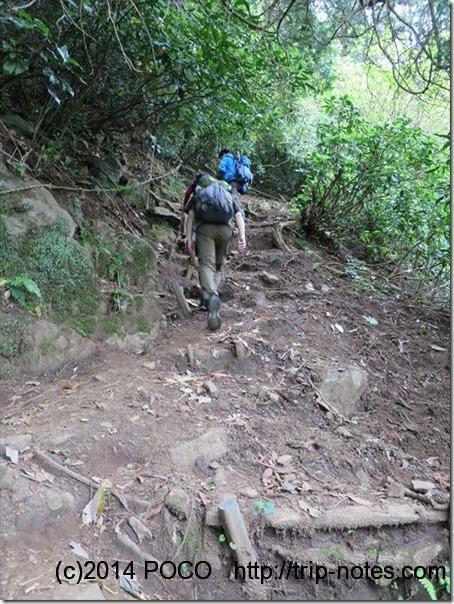 鷲頭山への登り