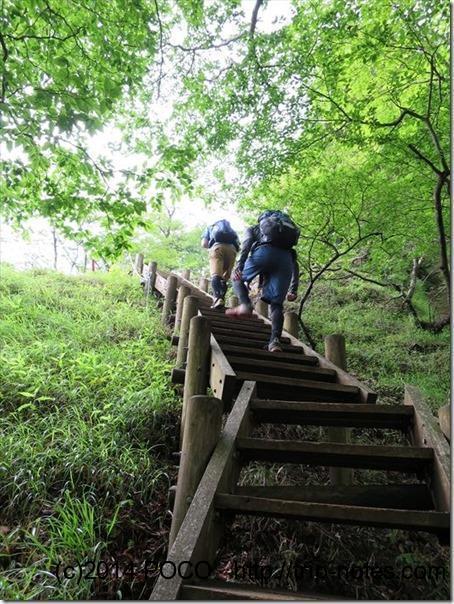臼ケ岳への階段