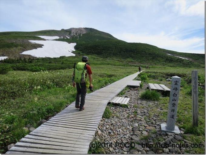霊峰白山登林道