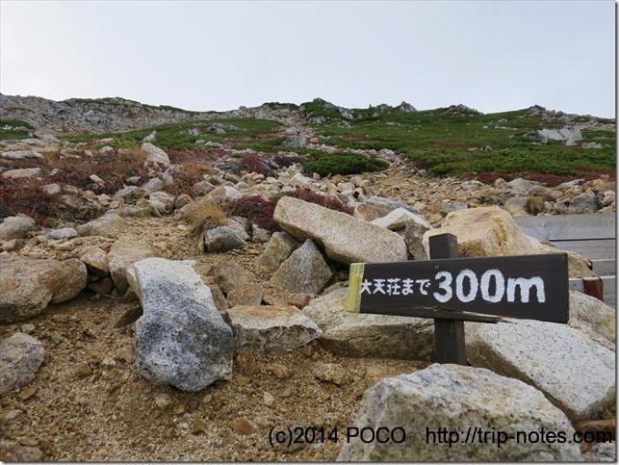 大天荘まで300m