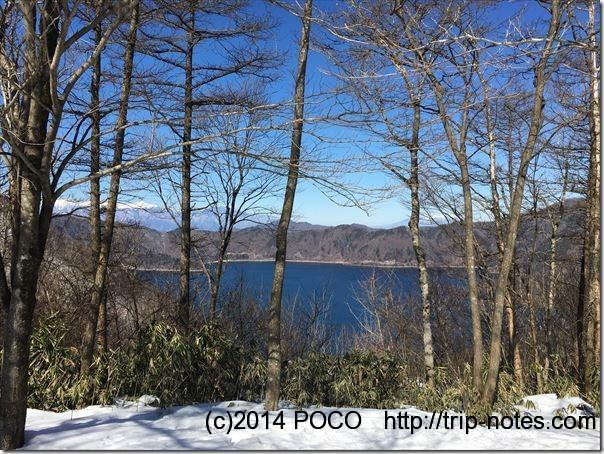 竜ヶ岳登山道からの本栖湖