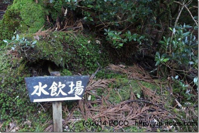 淀川小屋の水場