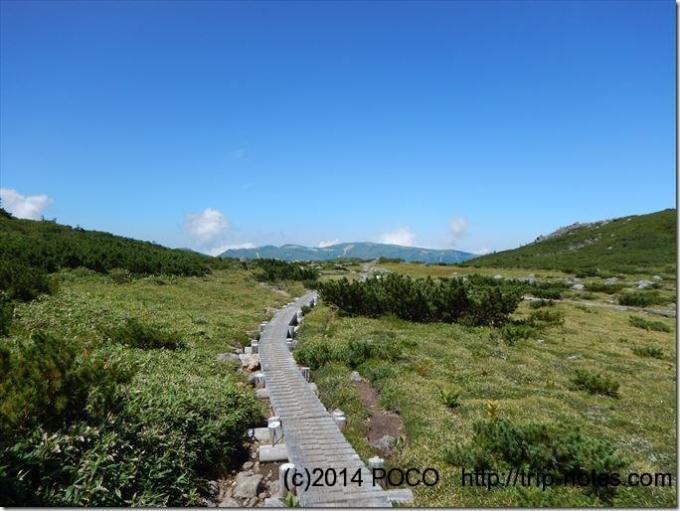 雲ノ平の木道