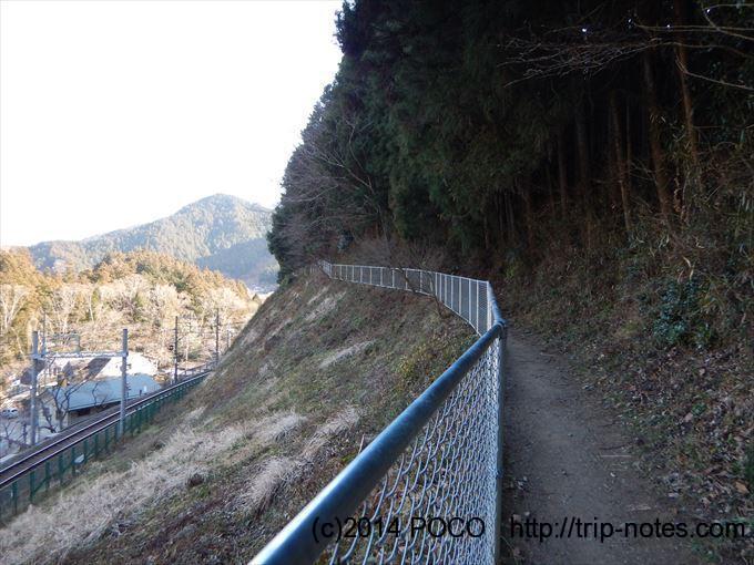 伊豆ヶ岳登山