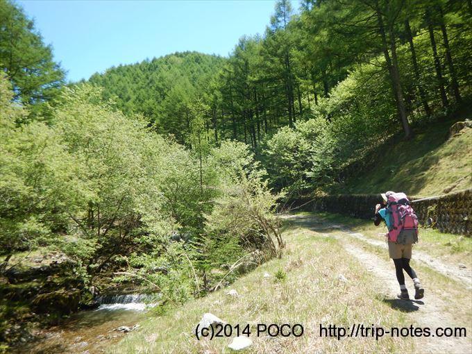 亀田林業林道