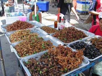 Кухня Таиланда: Экзотические блюда, насекомые