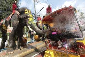 Слон набрасывает воду из своего сундука на туристов
