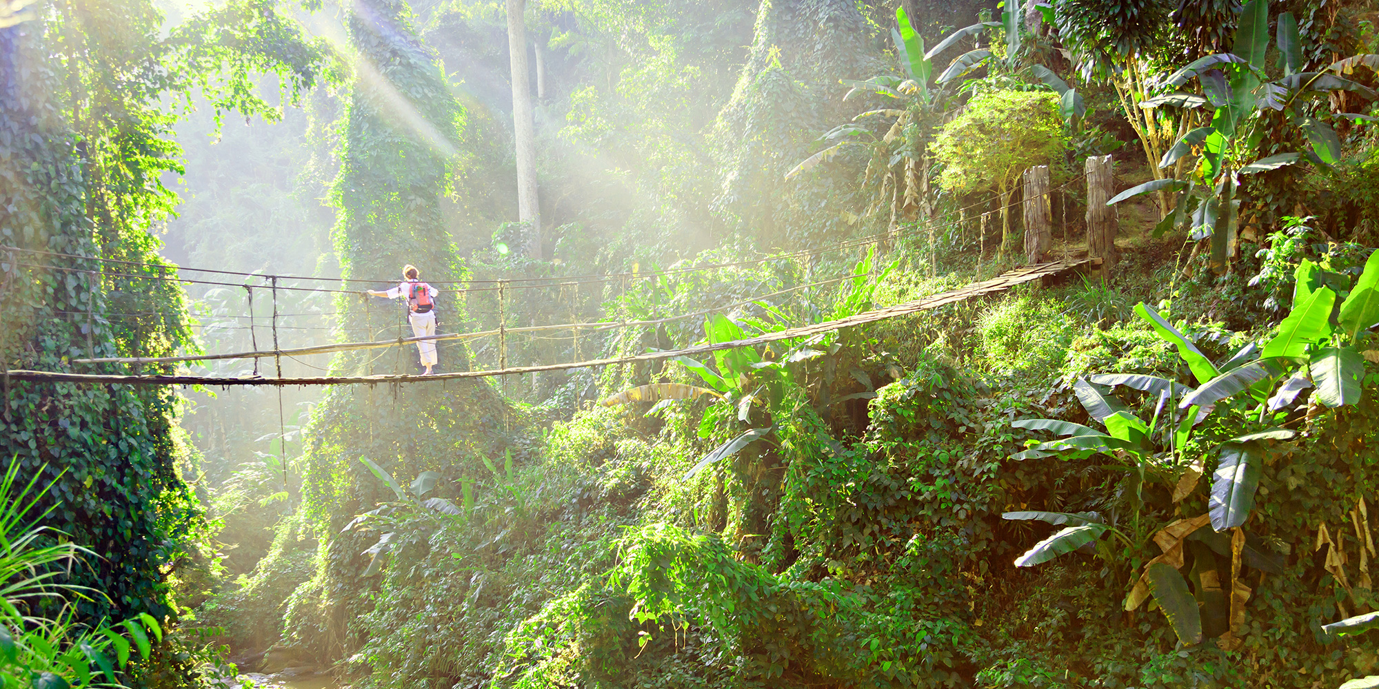How to Leave No Trace in the Rainforest