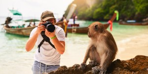 Wildlife Tourist Attractions – We Are All Responsible