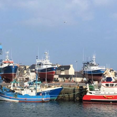 port de Guilvinec, Finistère