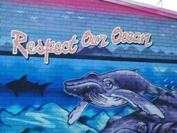 Byron Bay streetart