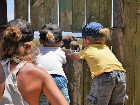 afrique du sud avec des enfants