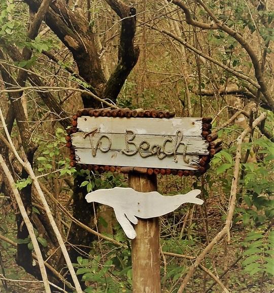rocktail camp - wilderness safari - acces plage (3)