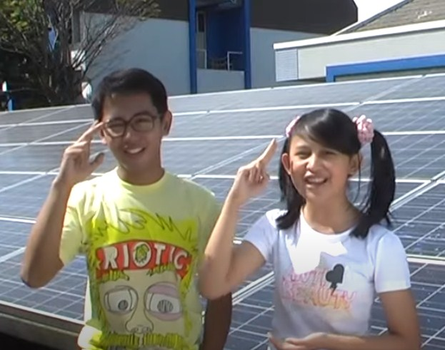 Mengapa panel surya (solar cell) menjadi bagian penting dalam pembangkit listrik tenaga matahari?