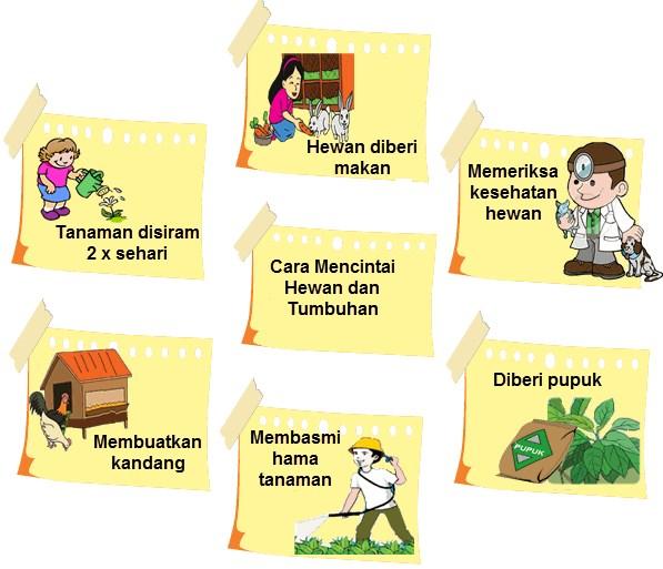 Soal dan Jawaban SBO TV 17 September SD Kelas 4