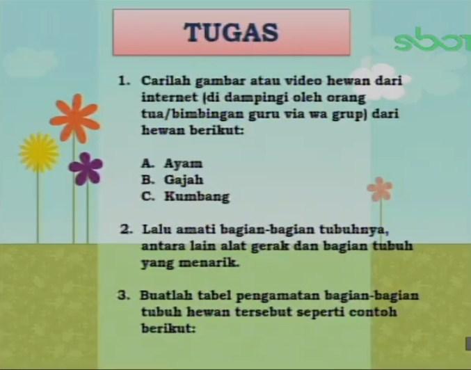 Soal dan Jawaban SBO TV 7 September SD Kelas 4