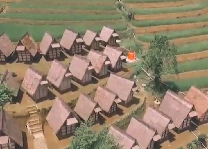 Mengapa di Desa Ciptagelar seluruh warganya wajib untuk menanam padi setiap satu tahun sekali?