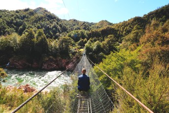 Swingbridge gorges de Buller