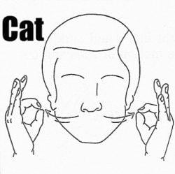 The Importance ofTraining Dogs and Cats in Sign Language